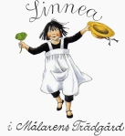 Linnea3-1