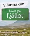 Sol7382_LivetPaFjallet_DVD-omslag-kopiera