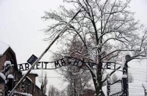 Auschwitz-Work_Set_Free